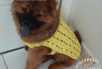 Capinha / Roupinha de Croche para Cachorro Max – Aprendendo Crochê