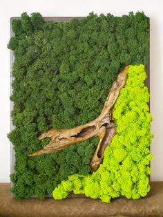 Moss Wall Art, Moss Art, Moss Graffiti, Moss Decor, Indoor Water Garden, Moss Garden, Deco Originale, Diy Signs, Dining Room Design