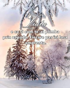 Snow, Coffee, Quotes, Outdoor, Kaffee, Quotations, Outdoors, Cup Of Coffee, Qoutes