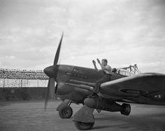 "Hawker Typhoon ""Longnose"""