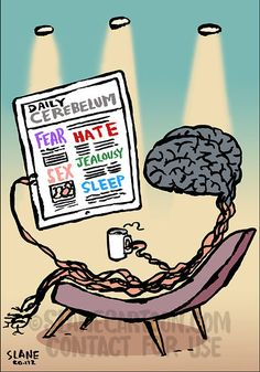 A brain sits in a chair drinking coffee and reading a tablet news paper named Cerebellum News with articles on hate sex sleep fear. Funny Images, Cartoons, Tights, Humorous Pictures, Cartoon, Animated Cartoons, Funny Pics, Animated Cartoon Movies, Funny Pictures