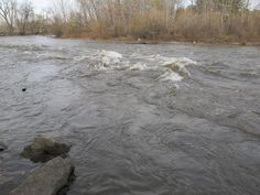 river flowing current - Google Search