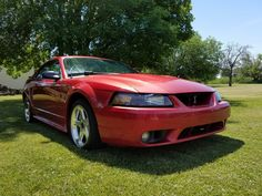 Car brand auctioned: Ford Mustang SVT Cobra Coupe 2-Door 2001 Car model ford mustang cobra svt no reserve