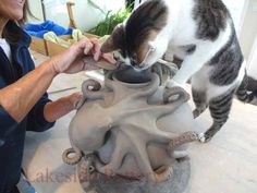 Hand building project - octopus climbing on vase. Visit this link for many clay photos!