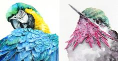I'm An Architect And I Escape Urban World By Watercoloring Birds | Bored Panda