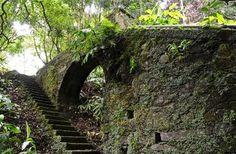 Os Açores são o local perfeito para os verdadeiros amantes da Natureza!  O trilho da Rota da Água tem início no parque de merendas do Lugar dos Remédios, na cidade da Lagoa e é um dos trilhos mais procurados da ilha! :)  Saiba mais sobre esta e outras atividades em www.bensaude.pt e fique a par das nossas #promoçoes ;) #visitazores #azoresislands #saomiguelisland #bensaudehotels