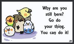 Motivational Birds thedailyquotes.com