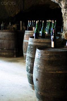 France, Loire, Bourgueil, Wine bottles on barrel in cellar
