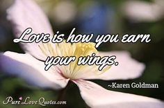 Love is how you earn your wings. #purelovequotes