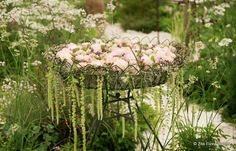 Wedding flowers by Zita Elze