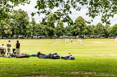 There are a lot of things to do in Richmond, London. From shops to pubs, green spaces to lanes, this part of the city is packed with opportunities. Richmond London, Wimbledon, Surrey, London England, Things To Do, Dolores Park, City, Places, Travel