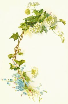 Vintage Flower Illustration with Branch HD Wallpapers