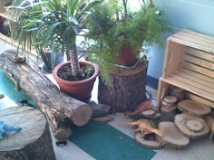 The Children's Centre (St. John Bosco)- Natural elements are used as everyday play materials that are always made available to children in this preschool program.