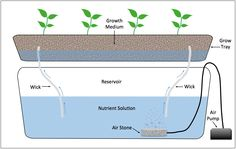 Diagram of a wick system hydroponic setup