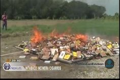 INTABACO descomiza e incinera cientos de cigarros de contrabando