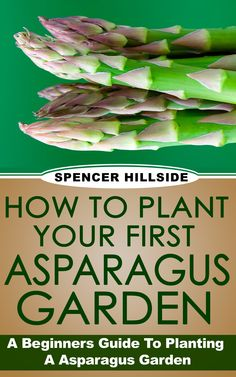 How To Plant Your First Asparagus Garden. by [Hillside, Spencer]