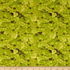 It's Wine O'Clock Packed Grapes Green from @fabricdotcom  Designed by Cynthia Coulter and licensed to Wilmington Prints, this wine inspired cotton print fabric is perfect for quilting, apparel and home decor accents. Colors include shades of green and brown.