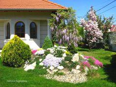 Sziklakert építése, gondozása - 6 tipp sziklakert házilagos kivitelezéséhez - MindenegybenBlog