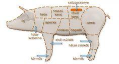 Disznó részei | Sertésből - Disznóból - készült receptek | Megoldáskapu Petra, Grilling, Foods, Drink, Health, Desserts, Bags, Meat, Food Food