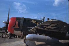 P-47 | Webkits Modelismo