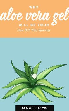 Aloe is nature's best beauty product. We'll tell you why we love aloe, especially in the summer, plus give you tips for using aloe on your skin, hair and more!