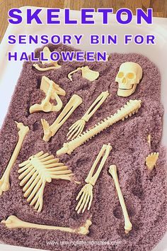 Skeleton sensory bin for Halloween. Toddlers and preschoolers will love learning about the human body with this taste safe sensory activity for Halloween. #halloween #sensory #toddlers #preschoolers #kindergarten Sensory Bins, Sensory Activities, Sensory Play, Halloween Activities For Kids, Science Experiments Kids, Toddler Preschool, Halloween Halloween, Kids House, Human Body