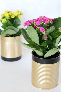 DIY recycled tin can flower pots - Instead of throwing away your tin cans why not recycle them into something pretty and useful like some flower pots. Heres how to make tin can flower pots in just a few easy steps. Tin Can Flowers, Diy Flowers, Flower Pots, Recycled Home Decor, Recycled Crafts, Mason Jar Crafts, Mason Jar Diy, Recycled Tin Cans, Tin Can Crafts