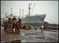 1971 | Wismar, Alter Hafen - Kai, Fuhrwerk und MS Mulde | V-like-Vintage