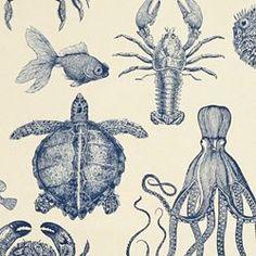 Oceana fabric, Thomas Paul.