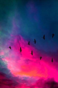 SAVING GRACE MUSIC - sacharyx3: sky | via Tumblr en We Heart It....