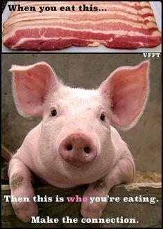 COLLEEN PATRICK-GOUDREAU | Inspiring Vegans | Pinterest