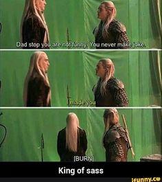 Thranduil and Legolas Tolkien, Hobbit Art, O Hobbit, Lee Pace, Thranduil Funny, Legolas And Thranduil, Legolas Hot, Kili And Tauriel, Hobbit Funny