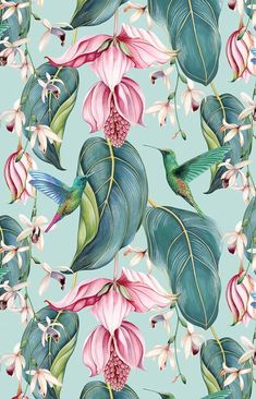 TRAILING ORCHID OUTDOOR fabric, part of the Spring 2020 SUMMERHOUSE collection from Osborne & Little. Our hummingbird finds it's way onto fabric, suitable for outdoor and indoor use. Trendy Wallpaper, Pretty Wallpapers, Floral Wallpapers, Wallpaper Designs, Designer Wallpaper, Botanical Illustration, Nature Illustration, Flower Phone Wallpaper, Floral Drawing