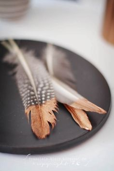 Feathers copper