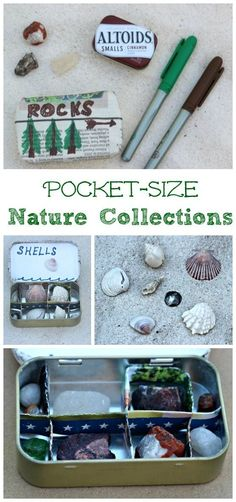 Easy science projects: creating a mini nature collection for kids!  Perfect for rock collecting, seashells and other trinkets.
