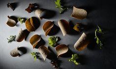 Tegole di farina di lino con cime di lollo condite con umeboshi, chef Simone Salvini #vegano #vegan