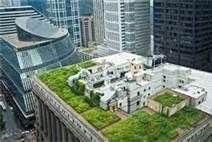 rooftop gardens - Bing Images
