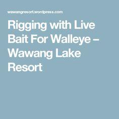 Rigging with Live Bait For Walleye – Wawang Lake Resort Walleye Fishing Tips, Pike Fishing, Fishing Guide, Live Bait, Lake Resort, Rigs, First Time, Weed, Knots