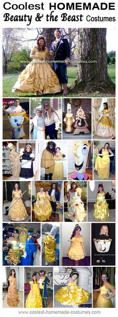 Homemade Beauty and the Beast Costume Collection - Coolest Halloween Costume Contest