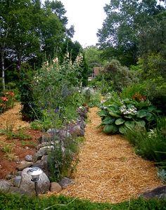 Straw on path under fruit trees