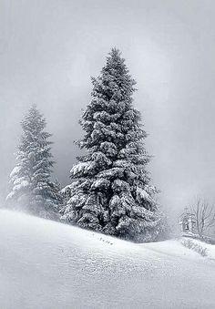 Fresh Snow - #Greece