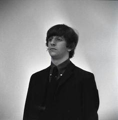 Ringo is my mood