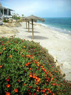 Playa Piedra Villazar, Mojacar Playa. #almeria http://www.ferienwohnungen-spanien.de/Mojacar-Playa/artikel/mojacar-playa-piedra-villazar