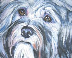 Havanese dog art CANVAS print of LA Shepard by TheDogLover on Etsy