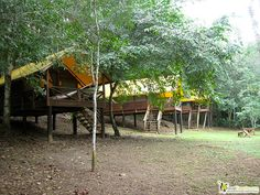Love this post about camping in Belize!