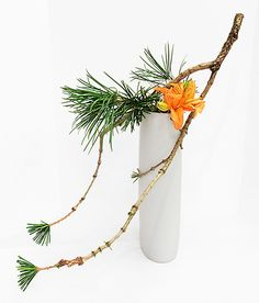 Ikebana Flower Arrangement, Ikebana Arrangements, Flower Arrangements Simple, Cactus Flower, Flower Vases, Flower Art, Flowers Nature, Beautiful Flowers, Arreglos Ikebana
