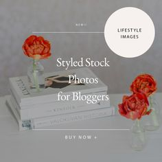 Styled Lifestyle Stock Photo Bundle by Petra Veikkola on @creativemarket
