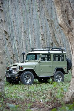Toyota Land Cruiser with snorkel - ready for adventure!