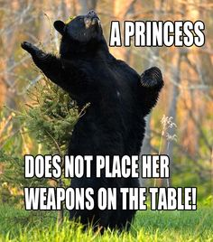 jaytasmic:    silentchimaera:    teahound:    Saw Shakespeare Bear, had to make it Brave lol.  Yanked from here!        DEAD.
