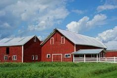 Complex of Red Barns of Vermont Farm Stock Photo